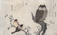 An Owl and two Eastern Bullfinches, from an album 'Birds co 22040224127| 写真素材・ストックフォト・画像・イラスト素材|アマナイメージズ