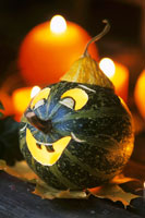 Green pumpkin with carved smiling face 22199021416| 写真素材・ストックフォト・画像・イラスト素材|アマナイメージズ