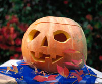 Hollowed-out pumpkin with face 22199029323| 写真素材・ストックフォト・画像・イラスト素材|アマナイメージズ