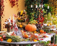 Laid table with autumn theme in open air 22199033499| 写真素材・ストックフォト・画像・イラスト素材|アマナイメージズ