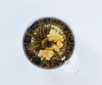 Tea flower with flowers in a glass cup 22199056491| 写真素材・ストックフォト・画像・イラスト素材|アマナイメージズ