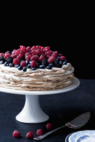 Layer cake with cream and berries on a torte stand 22199075945| 写真素材・ストックフォト・画像・イラスト素材|アマナイメージズ