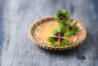 Lucky clover on a wooden plate 22199082592| 写真素材・ストックフォト・画像・イラスト素材|アマナイメージズ