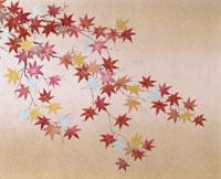 紅葉・イラスト 22451023617| 写真素材・ストックフォト・画像・イラスト素材|アマナイメージズ