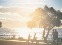 アラモアナビーチ公園夕景 25356000807| 写真素材・ストックフォト・画像・イラスト素材|アマナイメージズ