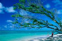 ローラビーチ 25356001616| 写真素材・ストックフォト・画像・イラスト素材|アマナイメージズ