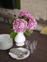 Close up of pink hydrangeas flowers in vase with glasses napkins and crockery in residential house, France. 25937008437| 写真素材・ストックフォト・画像・イラスト素材|アマナイメージズ