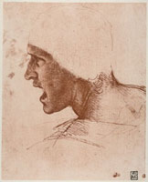 Study of male head for the Battle of Anghiari,drawing by Le 26144000011| 写真素材・ストックフォト・画像・イラスト素材|アマナイメージズ