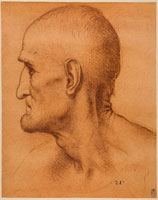 Study of the head of an apostle for the Last Supper by Leona 26144000353| 写真素材・ストックフォト・画像・イラスト素材|アマナイメージズ