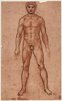 Frontal study of a male nude,pen and watercolor drawing on 26144000398| 写真素材・ストックフォト・画像・イラスト素材|アマナイメージズ