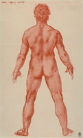 Rear study of a male nude,sanguine drawing on white paper b 26144000399| 写真素材・ストックフォト・画像・イラスト素材|アマナイメージズ