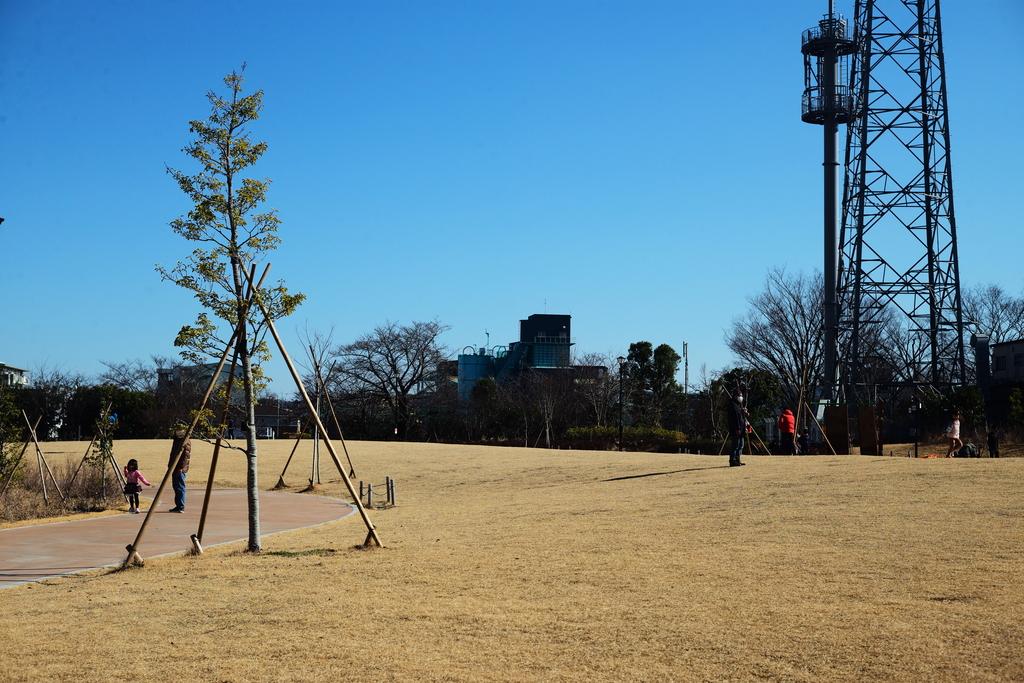 So large park.