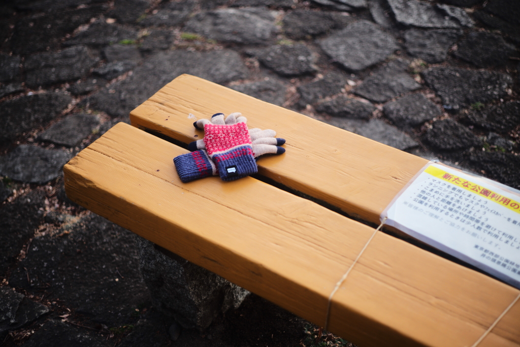 There was a pair of gloves on bench.