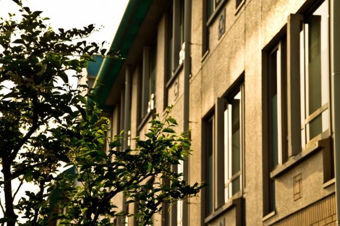 インターンに積極的に取り組んでいる大学4選