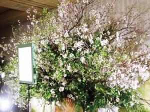 その人の生きざまを一心にヒアリングをして、提案をした『花葬儀』の演出。この花祭壇は、桜を使って、その人のダイナミックな人生を表現!関わる方すべての人の心に生き続けますように