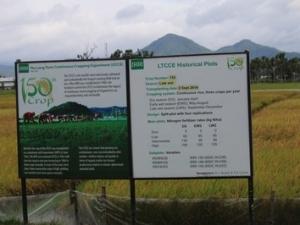 お米の生産から事業展開しています!