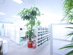 緑と清潔感溢れる社内。