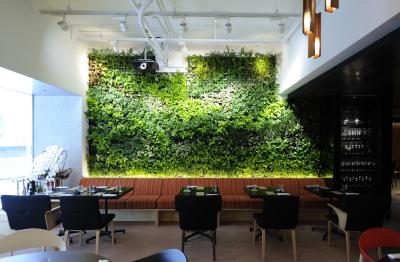 壁面緑化を取り入れた店内。デザインも自社で行っています。