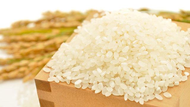 玄米ダイエットには向いてる人と向いてない人がいる?