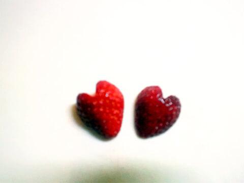 """""""痩せ弁当""""&クエン酸が脂肪燃焼力をUP「キウィとハートのイチゴ」-04"""