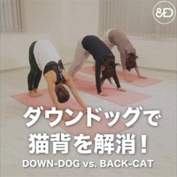 全身のゆがみを整える「ダウンドッグ」で猫背を解消!