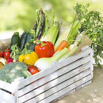 夏のダイエットにお勧めの食生活<夏野菜・夏フルーツ>