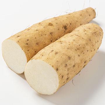 粘膜を強くして胃炎対策や風邪予防ができる食材「山芋」