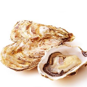 亜鉛を多く含み新陳代謝を促す食材「かき」の特徴や調理法