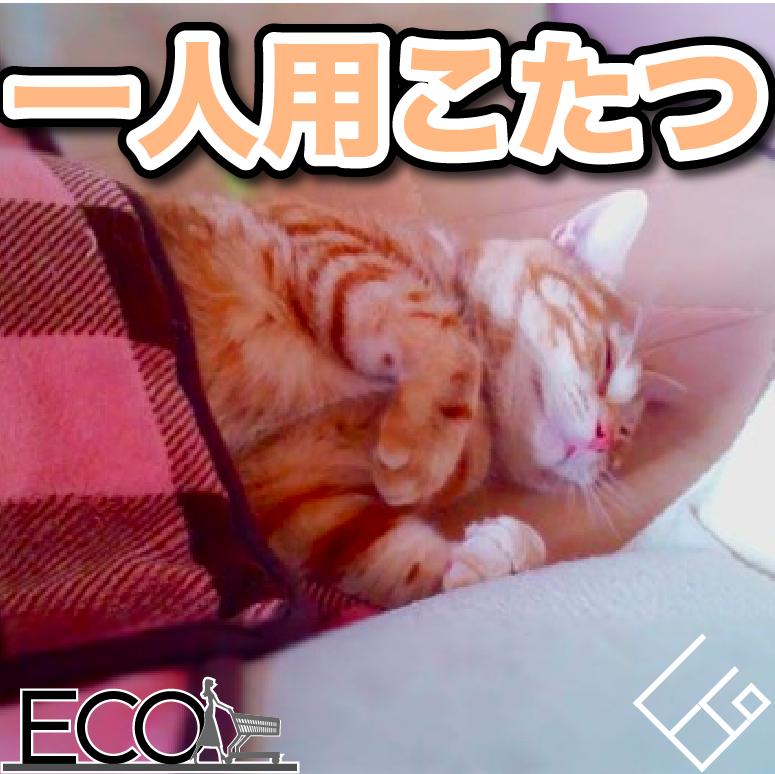 一人用こたつのおすすめ10選!【小さい/おしゃれ/ハイタイプ/安い】