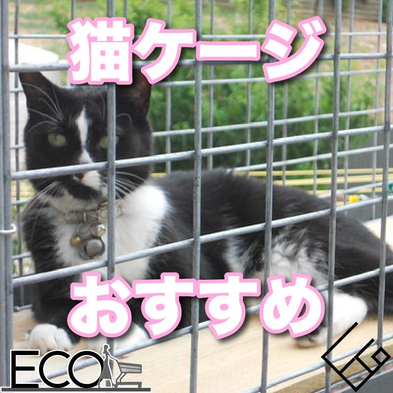 人気でおすすめの猫のケージ【おしゃれ・サイズ・必要?】