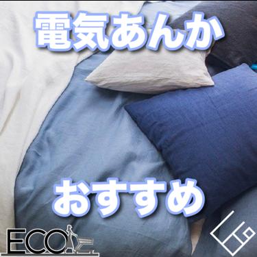 【徹底比較】おすすめの電気あんか10選|消費電力が少なく高コスパ!