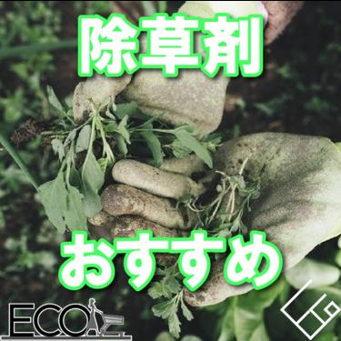 除草剤おすすめ人気ランキング10選【子供/ペットでも安全な除草剤】