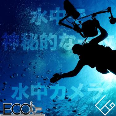 水中カメラおすすめ人気12選【2020最新/アクションカメラ/ダイビングや海のレジャーで活躍!】