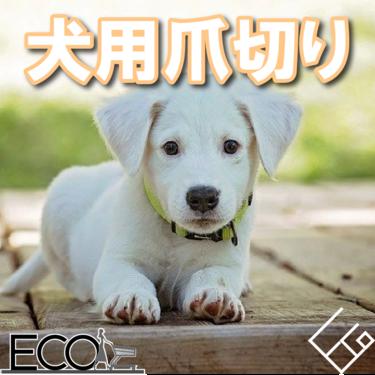 人気おすすめの犬用爪切り10選【おしゃれ/安い/比較】
