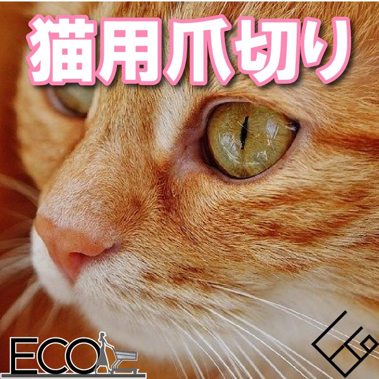【2020年最新版】猫爪切りおすすめ人気ランキング10|安くておしゃれな猫爪切りを選ぼう