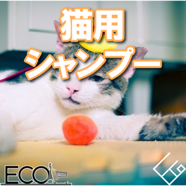 人気おすすめの猫用シャンプー10選【大切な愛猫に】