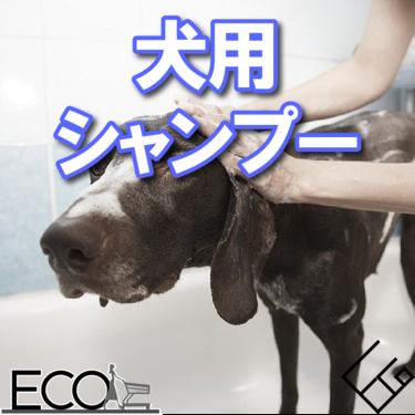 人気おすすめの犬用シャンプー15選【洗い方までご紹介!】