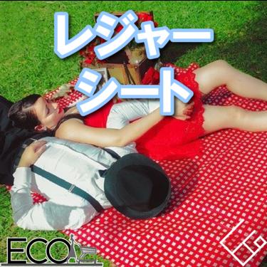 レジャーシートおすすめ人気ランキング10【コールマン・ロゴス・山陽製紙】