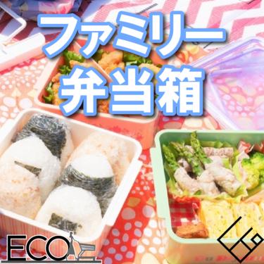 ファミリー弁当箱のおすすめ人気ランキング10選【運動会に是非!!】
