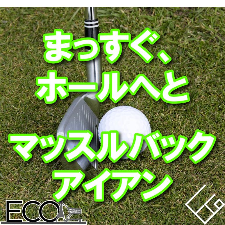 マッスルバックアイアンおすすめ10選【初心者/徹底解説】