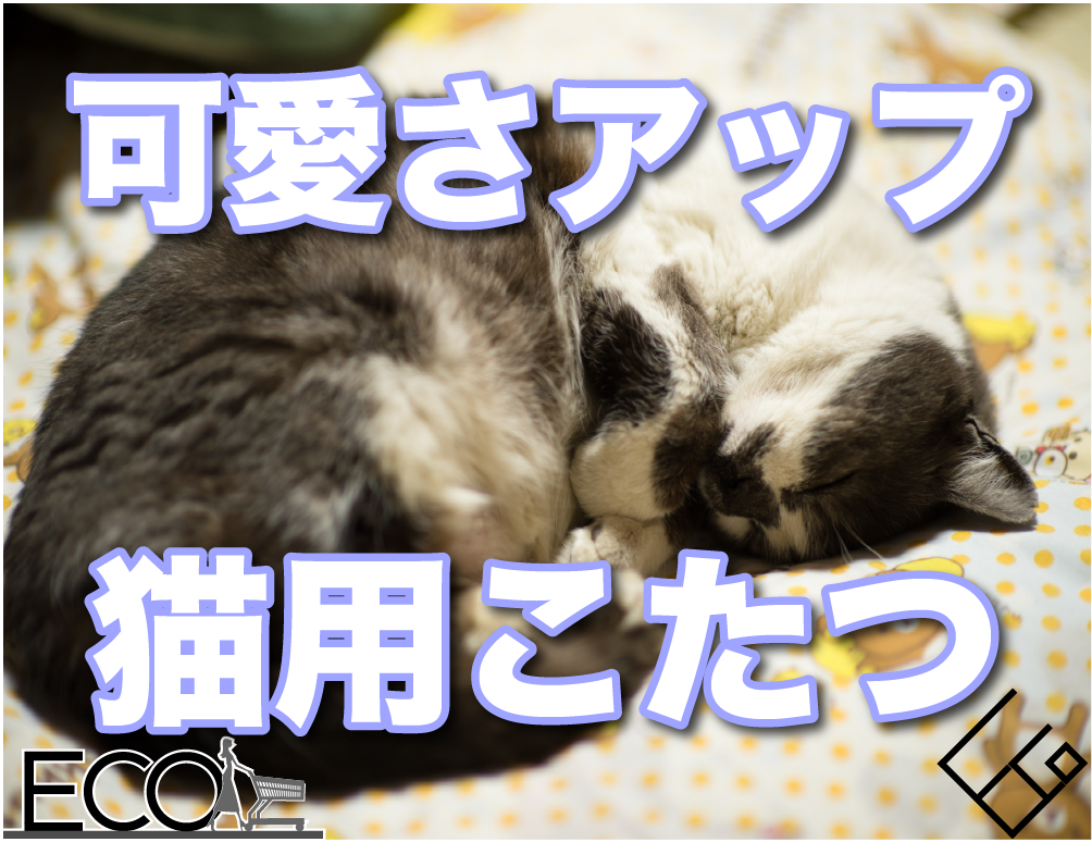 【インスタ映えも】猫用こたつおすすめ6選