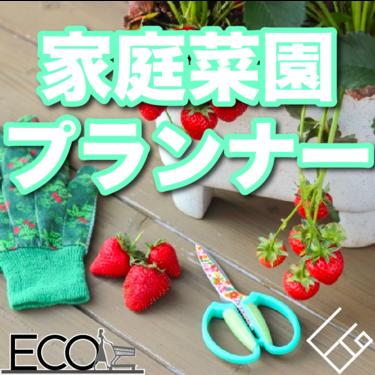 家庭菜園用プランターおすすめ人気15選【室内/野菜/春/花/おしゃれ】