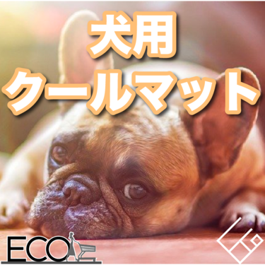 犬用クールマットおすすめ17選【愛犬を夏の暑さから守る/好みに合わせて選ぶ】