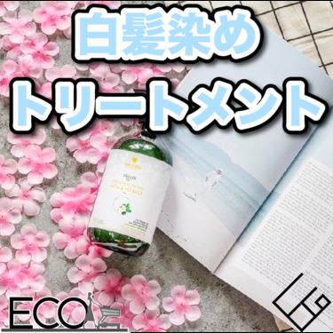 白髪染めトリートメントのおすすめランキング20選【比較/安全/効果】