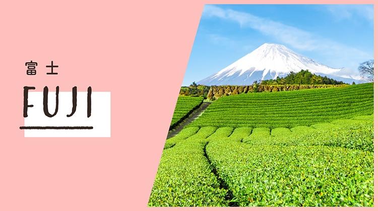 富士でおすすめの脱毛サロン3選!