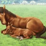 スティールハート、アローエクスプレスの名前が付けられないのは何故? ←種牡馬や繁殖牝馬の名前は…