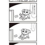IMG_5690