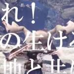 【動画あり】TVCMの解禁キタ━━━━(゚∀゚)━━━━!!これはテンション上がりまくり!!!