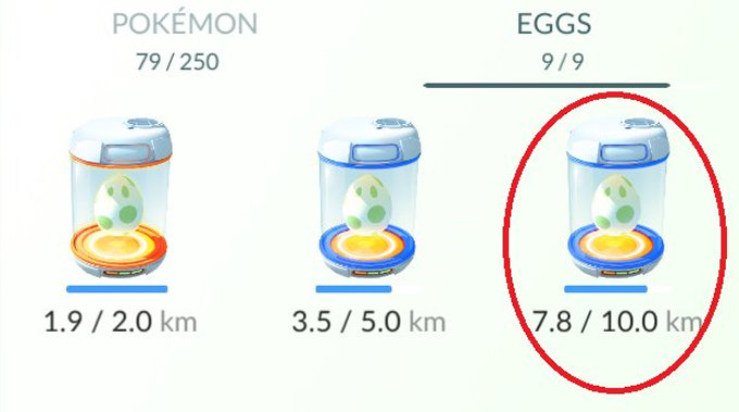 pokemon-go-tamago-huka-purarail-5