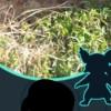 【悲報】田舎プレイしているユーザーさん、危うく通報されかけるwwwwwwwww